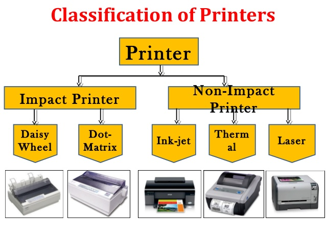Different types of printers with examples in computer study.